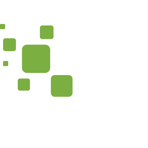 Digital Media and Content